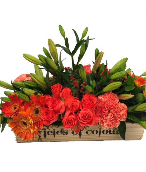 Asiatic Lilies, orange Crush Roses and orange Gerberas