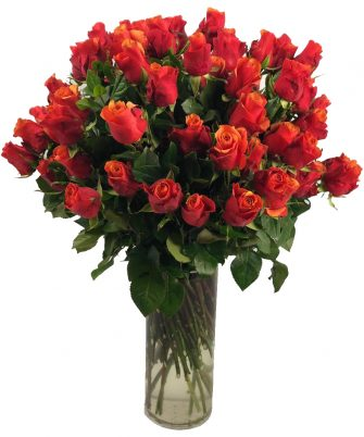 Cherry Brandy Roses'